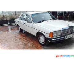 Mercedesº 300 D 1975