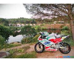Aprilia Aprilia Rs 125 Rs 2008