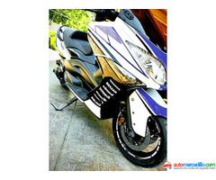 Yamaha Tmax 500   2008